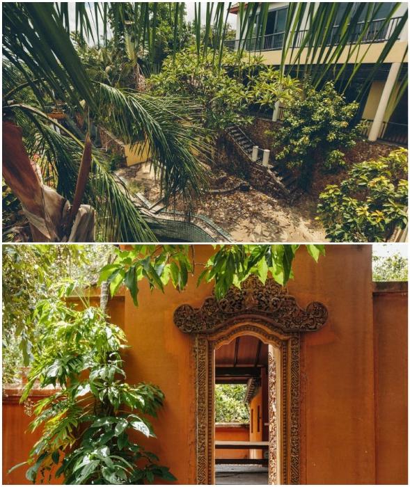 На территории Resort&SPA хозяйничают только экзотические растения (о. Самуи). © Ольга Салий.