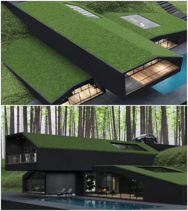 Зеленые крыши становятся популярным элементом в проектировании современных жилых домов (концепт Black Villa, США).