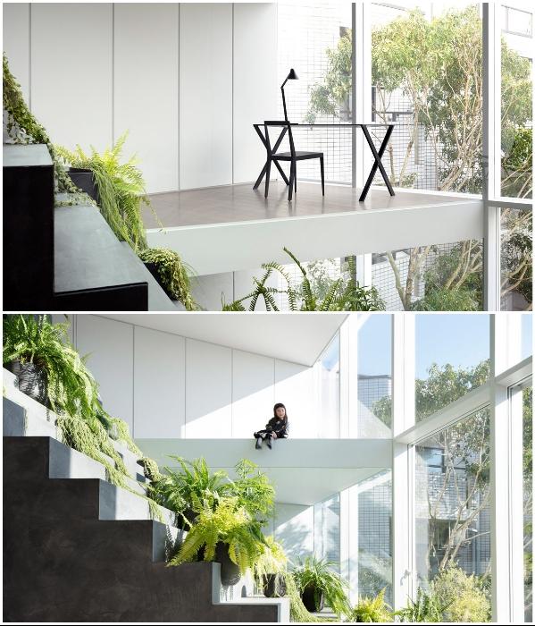 Ко всем открытым площадкам и зонам, расположенным у стеклянной стены, организован свободный доступ для всех жильцов. («Stairway House», Токио). | Фото: mymodernmet.com.
