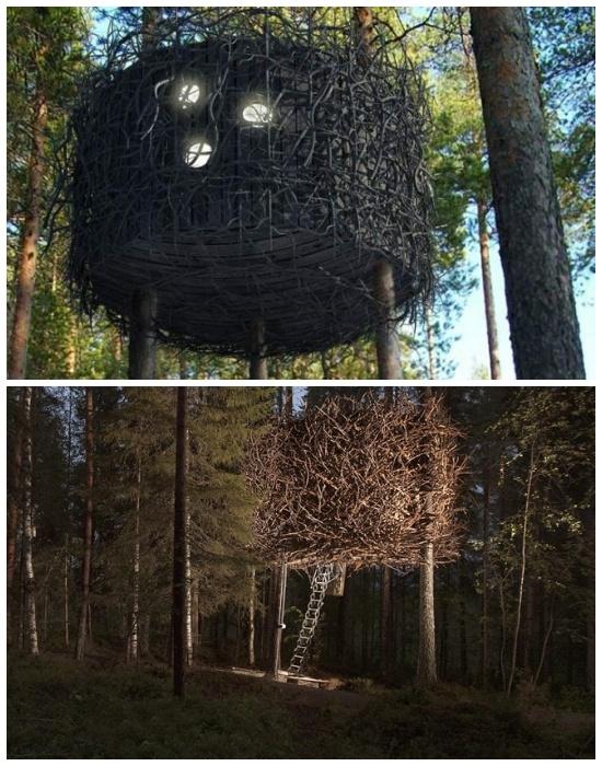 Самый экзотический и максимально приближенный к природной среде номер «Птичье гнездо» (отель Treehotel, проект Inredningsgruppen Bertil Harstrom).  | Фото: archiseasons.ru.