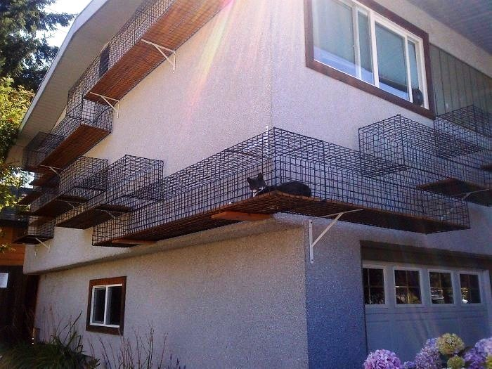 Для создания «катио» сгодится и фасад дома. | Фото: cpykami.ru.