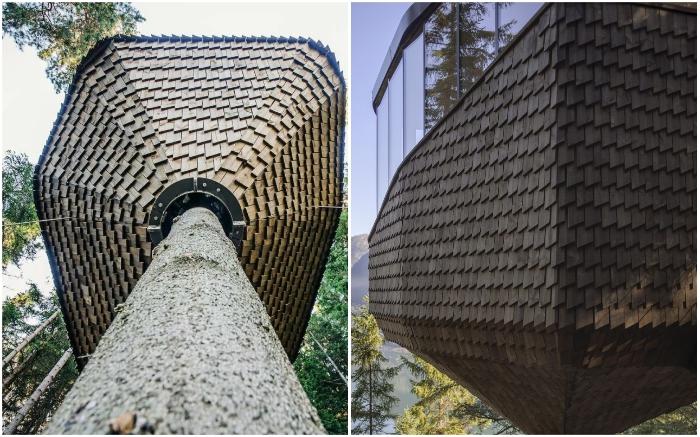 Деревянная черепица хижины, напоминающая перья совы, помогает вписаться в естественное окружение (Woodnest, Норвегия). © Sindre Ellingsen.
