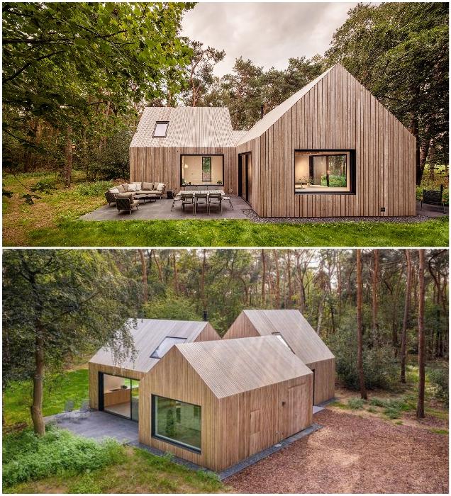 Фасад и даже крышу зашили натуральной доской («Villa Tonden», Нидерланды). | Фото: dymontiger.livejournal.com.