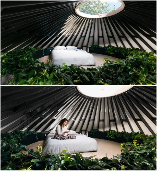 Спальня получилась действительно восхитительной! | Фото: apartmenttherapy.com.
