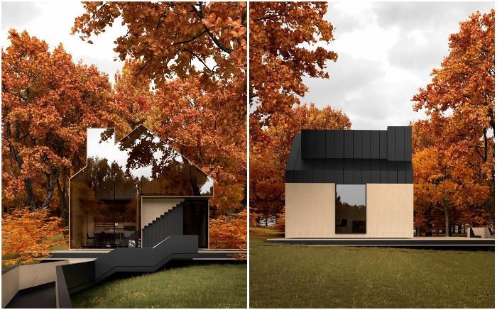Зеркальный фасад Sol House позволяет зданию сливаться с природой (концепт Alex Nerovnya Architects).