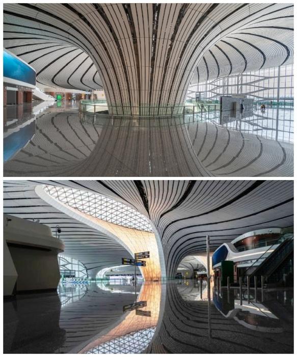 Оригинальные обтекаемые формы в тандеме с огромным количеством окон делает интерьер еще более просторным и впечатляющим (Daxing International Airport, Пекин). | Фото: elledecoration.ru.