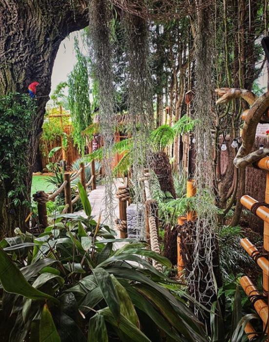 Настоящий тропический лес вырастил британский строитель в климатических условиях Англии. | Фото: instagram.com.