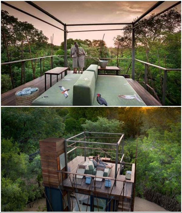 Терраса на крыше может быть и гостиной, и спальней под открытым небом («Ngala Treehouse», Kruger National Park). | Фото: africansafariexperts.com/ officiel-online.com.