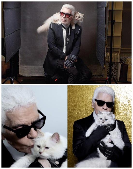 Любимица мэтра кошка Шупетт позирует вместе со своим хозяином.