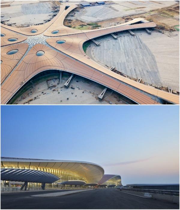 В Пекине открылся крупнейший аэропорт мира, одно из последних творений легендарной Захи Хадид (Daxing International Airport, Китай). | Фото: mymodernmet.com.
