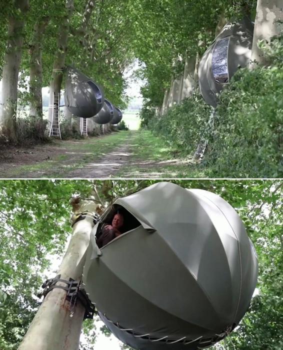 Отдых на лоне природы подарит немало впечатлений, особенно если номер окажется на дереве («Tranendreef & Tentvillage», Бельгия). | Фото: youtube.com/ ©Yahoo Finance.