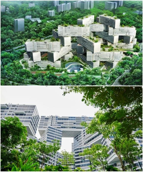 ЖК «Interlace» идеально вписался в природную городскую зону (Сингапур). | Фото: archdaily.com.