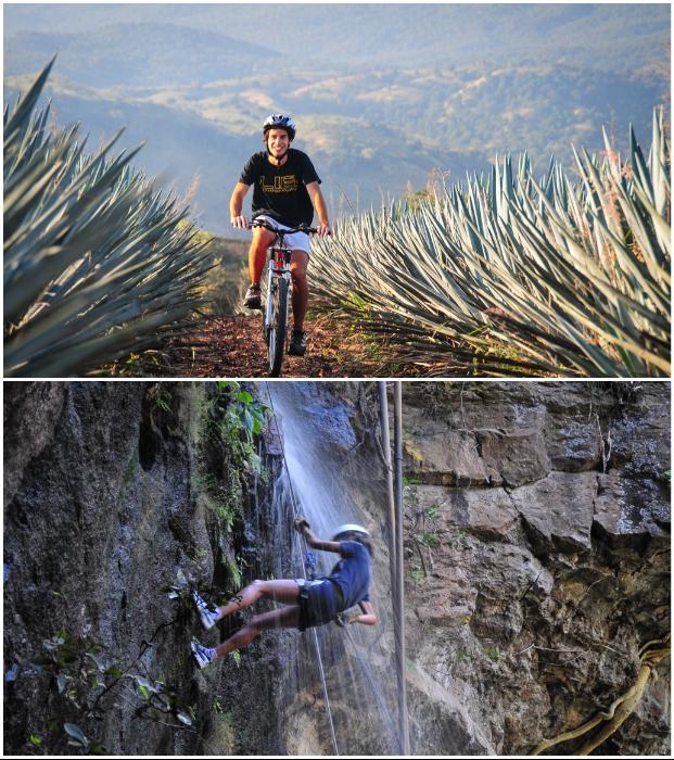 Любители активного отдыха могут отправиться в горы или прокатиться на велосипеде по бескрайним полям агавы («Matices Hotel de Barricas», Мексика). | Фото: tequilacofradia.com.mx.
