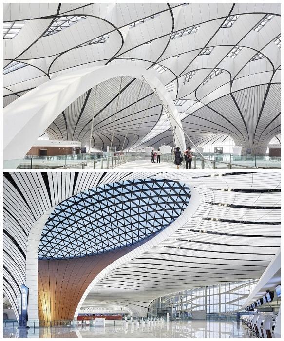 Огромное количество окон обеспечивают внутреннее пространство аэровокзала дневным светом, делая его еще более впечатляющим (Daxing International Airport, Пекин). | Фото: ru.zhambylnews.kz.