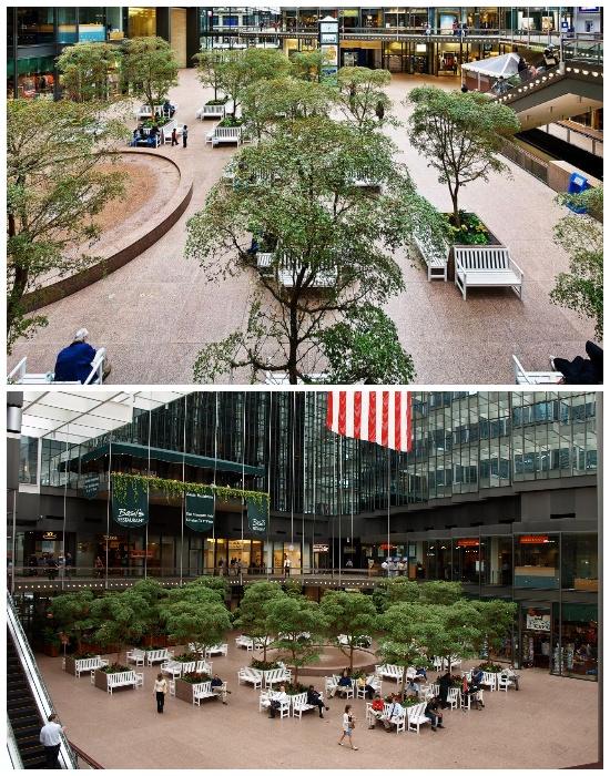 Зимний сад на территории Minneapolis Skyway System выступает в роли особой зоны релаксации в любую пору года. | Фото: moyaamerica.com.