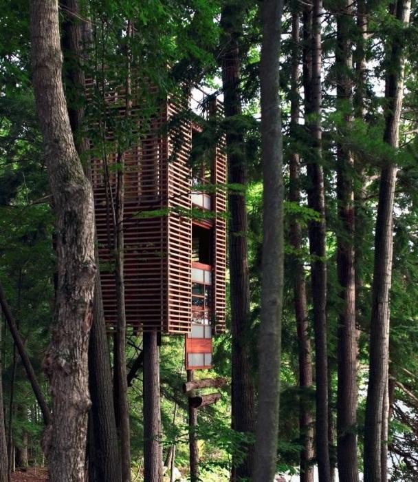 Домик на дереве «4TreeHouse» спроектировал канадский архитектор Lukasz Kos. | Фото: matadornetwork.com.