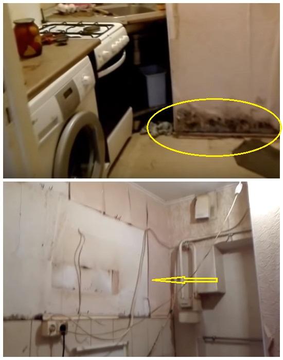 Стены в кухне были покрыты плесенью, а провода свисали просто над рабочей поверхностью и плитой. | Фото: youtube.com.