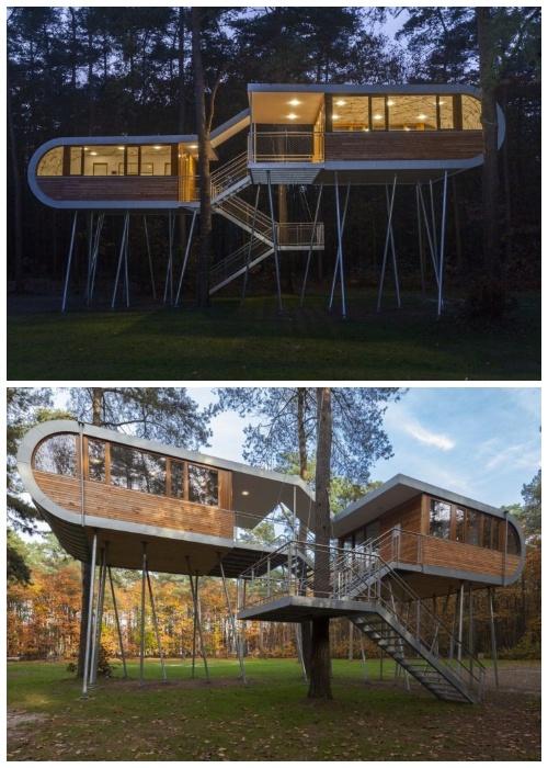 Конструкция строения похожа на книгу (Дом-офис TREEHOUSE, Бельгия).
