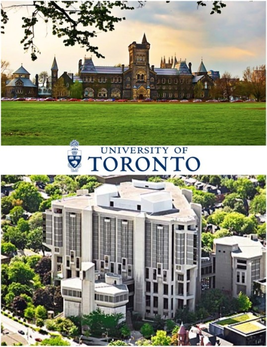 University of Toronto объединяет три кампуса, в которых учится 70 тыс. человек (Канада). | Фото: simplex.ua.