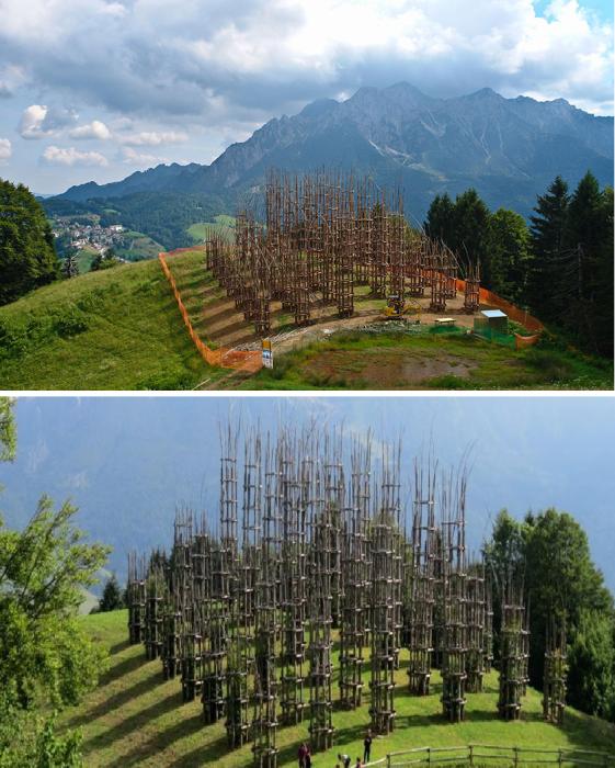 Созданный из деревьев храм занимает площадь 650 кв. м («Cattedrale Vegetale», Италия).   Фото: ecodibergamo. it/ lifeguide.com.ua.