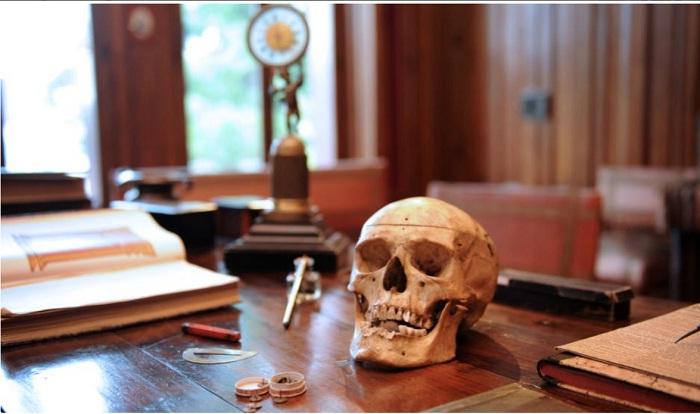 Необычный экспонат на рабочем столе Луи Мантена.