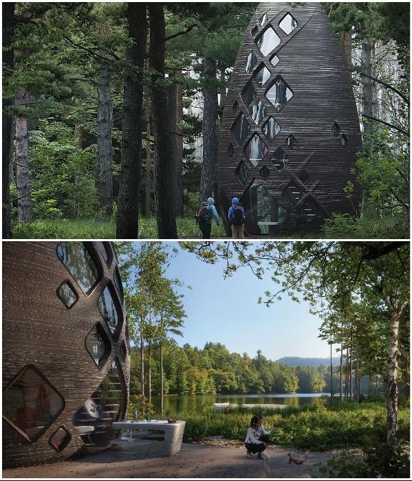 D-печатный футуристический эко-дом «TERA» расположен в лесах штата Нью-Йорк на берегу Гудзона. | Фото: 3dprintingmedia.network/ architectmagazine.com.