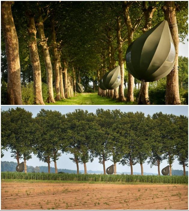 В пригороде Борглун находится эко-отель, который предлагает провести отдых в необычных палатках «Tranendreef & Tentvillage» на дереве. | Фото: interestingengineering.com/ youtube.com, © Z33be.