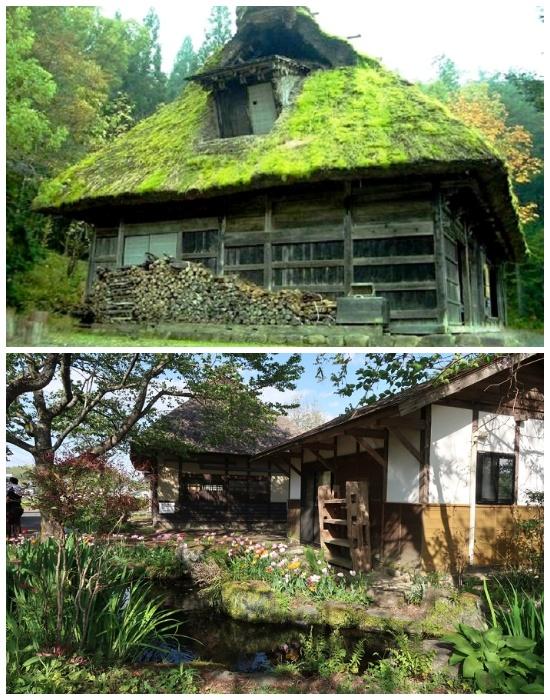 Самобытные дома в японских деревнях ждут своих новых хозяев.