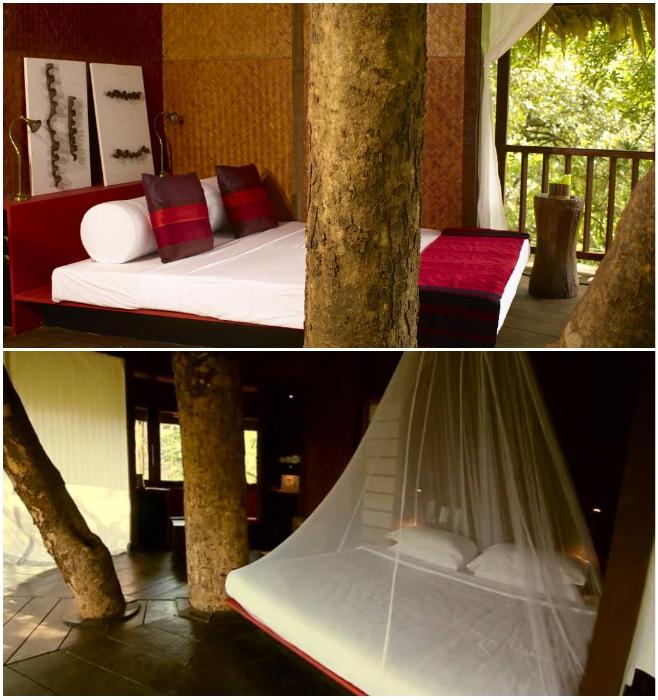Романтический номер на дереве – идеальное место для любителей уединенного отдыха на природе (Rainforest, Индия). | Фото: rainforest-boutique-resort.kerala-hotels.