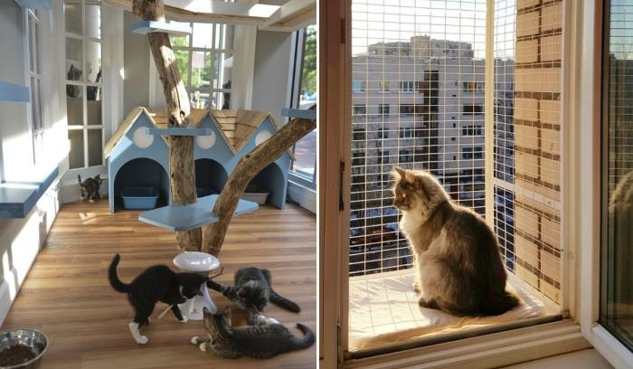 «Котио» - новый тренд для владельцев кошек. | Фото: sdelaibalkon.com.