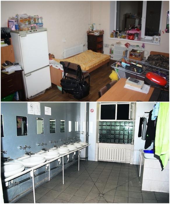 Украинские реалии жизни в студенческих общежитиях. | Фото: ru.osvita.ua.