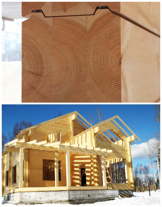 Архитекторы финской компанией Pluspuu Oy и строительные фирмы создают бревенчатые срубы по особям технологиям.