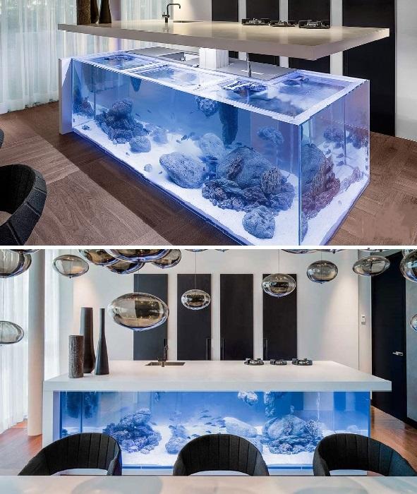 Вряд ли такие кухонные острова-аквариумы появятся в массовом производстве.