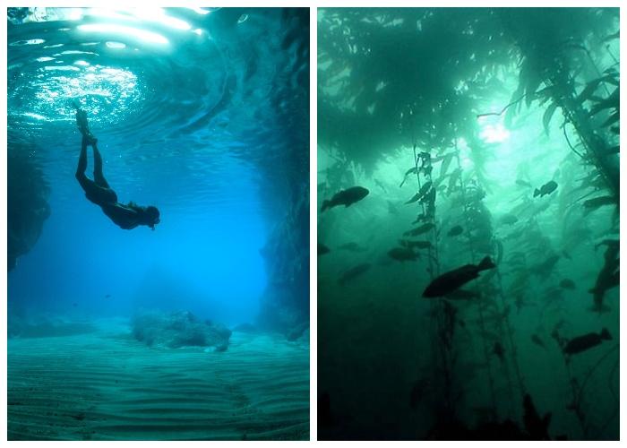 Глубина размещения подводного города играет главенствующую роль.