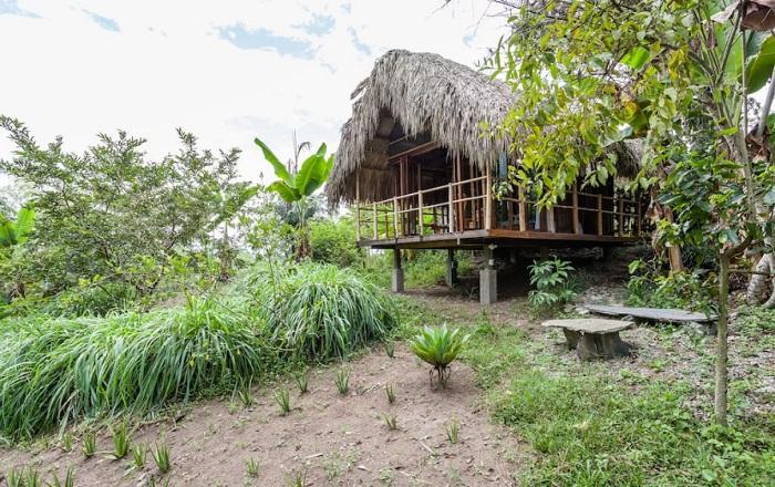 Эта хижина является одним из самых желанных мест отдыха (Колумбия).