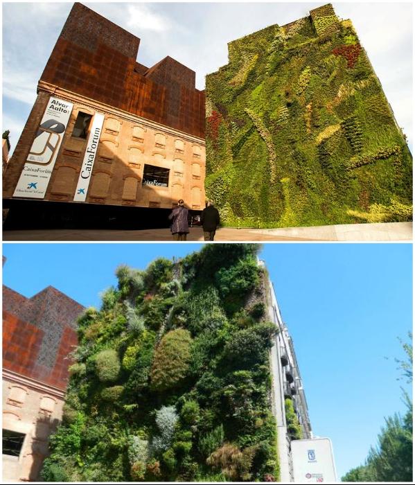 Культурный центр CaixaForum Madrid). | Фото: espanarusa.com/ mundandy.com.