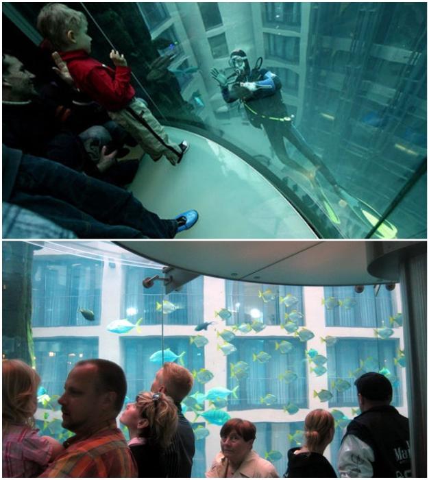 Гости отеля отправляются в подводное путешествие каждый раз, когда нужно воспользоваться лифтом (AquaDom, Берлин).