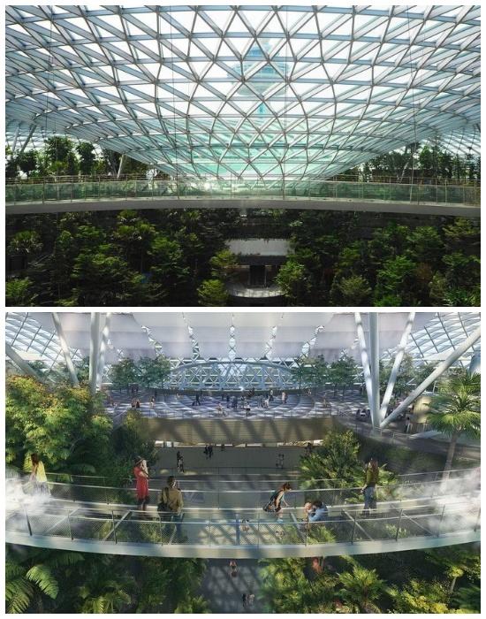 Стеклянный мост Canopy Bridge, расположенный под самым куполом, подарит иллюзию прогулки по облакам (Changi Airport, Сингапур).   Фото: realt.onliner.by.