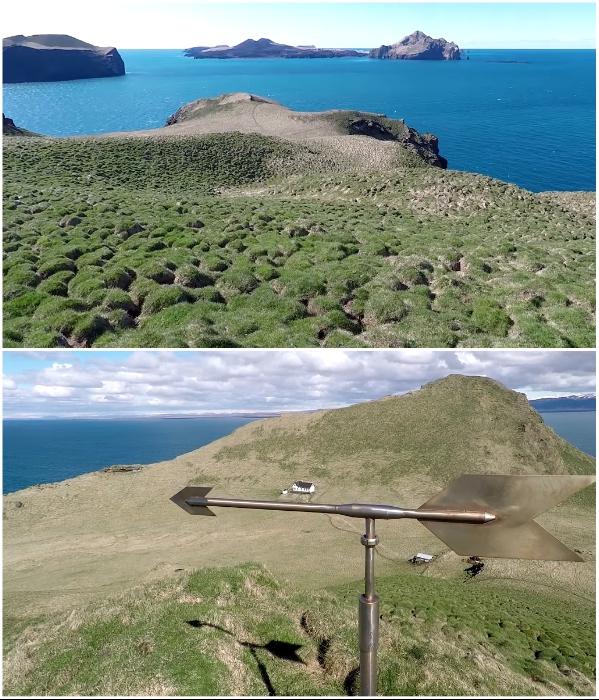 Смельчаков, взобравшихся на плато, встречает флюгер и дикая природа (о.Эдлидаэй, Исландия). | Фото: youtube.com/ © Torz Film.