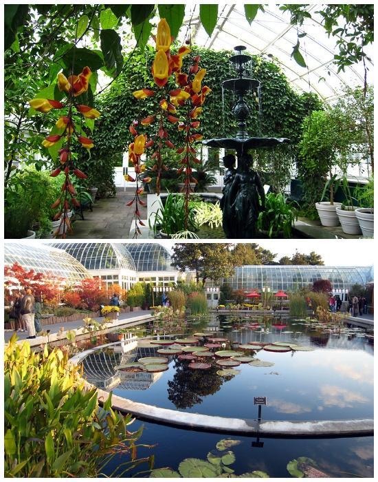 Для некоторых видов растений созданы особые условия (Brooklyn Botanic Garden). | Фото: gardener.ru.