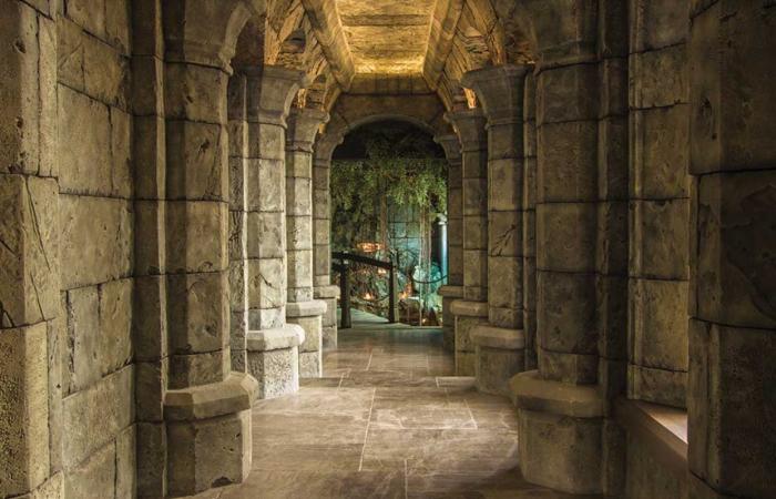 Сумрачная галерея приведет в самый настоящий грот с зимним садом («Замок Гарибальди», с. Хрящевка). | Фото: garibaldicastle.com.