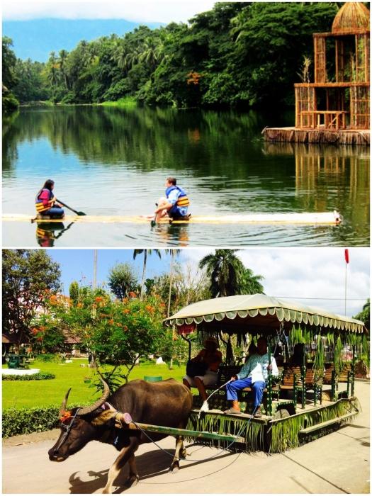 После сытного обеда можно отправиться на прогулку на бамбуковых плотах или традиционных повозках (Villa Escudero Resort, Филиппины). | Фото: mihella.me/ goasiadaytrip.com.