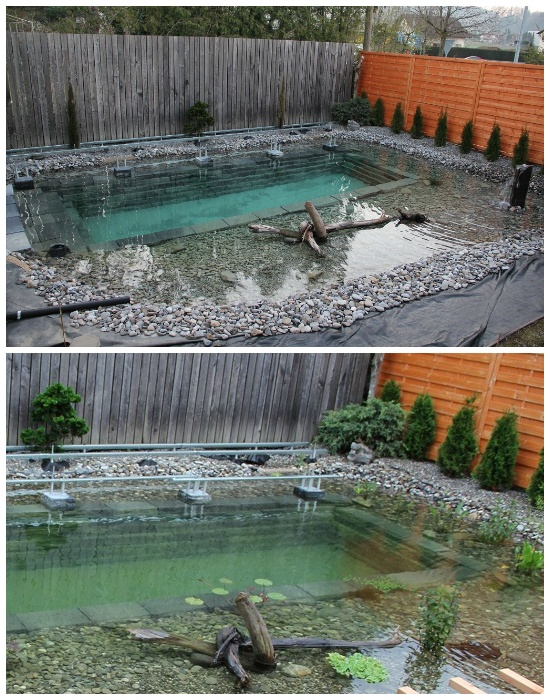 Весной начали облагораживать территорию и высаживать водные растения. | Фото: klubstroitelei.com.