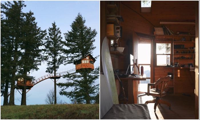В «Treehouse» есть все необходимое для проживания круглогодично  (Колумбия, США). | Фото: rope-park.com.