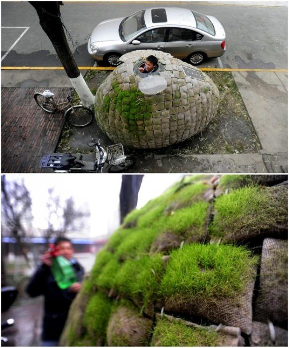 Молодой архитектор Дай Хайфэй, чтобы не платить за аренду жилья построил себе дом-яйцо прямо у входа в офис (Egg House, Пекин). | Фото: fastcompany.com.