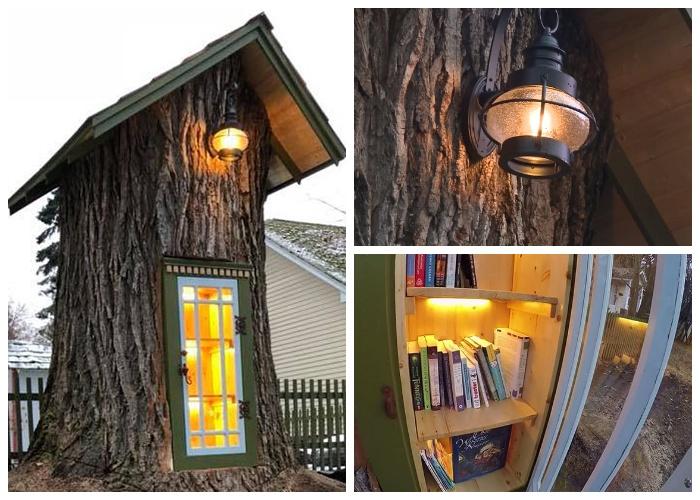 В необычной библиотеке в старом дереве есть даже электричество (Little Free Library, Кер-д'Ален).