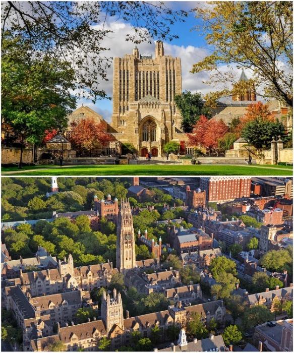 Йельский университет считается красивейшим кампусом Америки (Yale University, США). | Фото: unipage.net.
