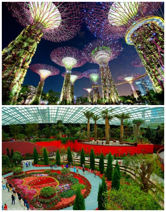 Самый фантастический сад мира (Singapore Botanic Gardens). | Фото: artinheart.ru.