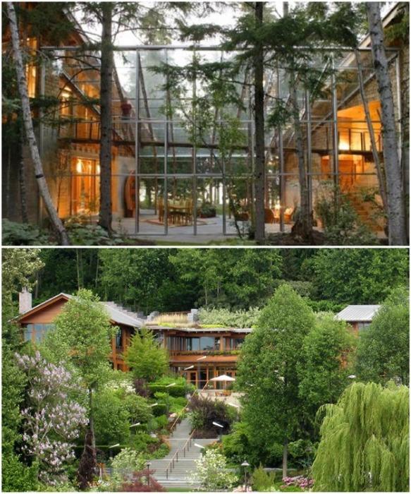 В домовладении Билла Гейтса все спланировано так, чтобы не наносить урон экологии (Xanadu 2.0). | Фото: comedyflavors.com.