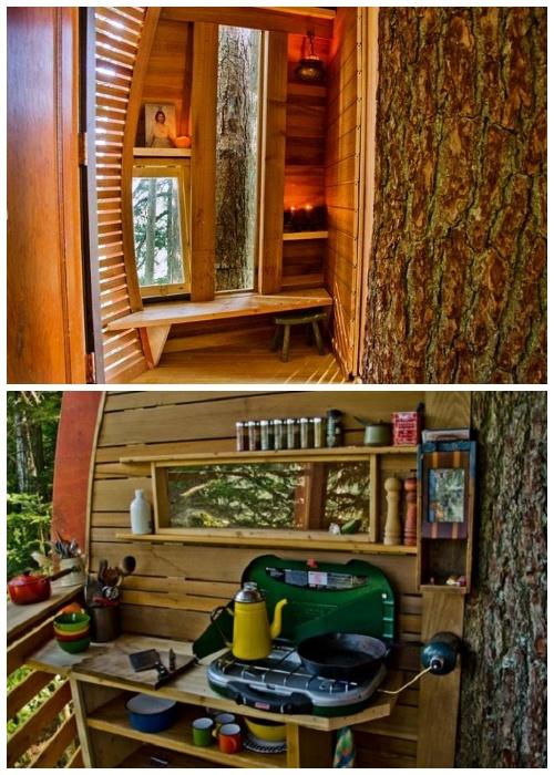 В домике-яйце, расположенном высоко на дереве, удалось создать все необходимые для проживания зоны (HemLoft, Канада).